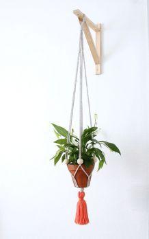 Suspension plante traphilo pompon orange