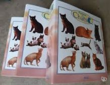 Passion des chats - 3 classeurs COMPLETS
