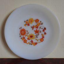 Plat ou grande assiette Arcopal