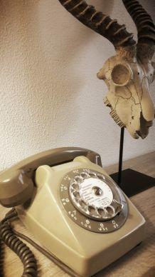 Téléphone à cadran vintage de 1983