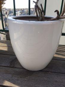 3 petits pots de fleurs en céramique blanche