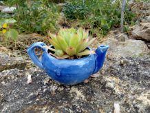 Joubarbe en théière, création végétale par recyclage, détournement, décoration de table, de jardin, de terrasse, théière recyclée, détournée