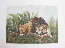 tableau peint lion
