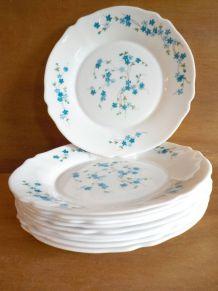 10 Assiettes plates Arcopal Myosotis