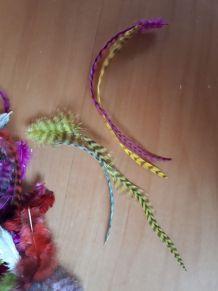plumes couleur loisir creatif