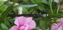 Bracelet à Message Acier Inoxydable Noir