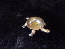 petite coupelle tortue