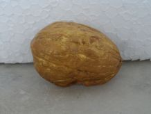 Crèche dans une coquille de noix