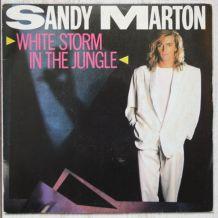 "Vinyl 45t SANDY MARTON ""White storm in the jungle"""