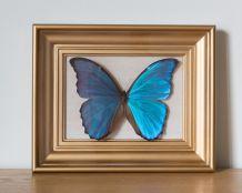 Papillon encadré