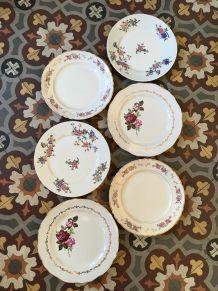 Six assiettes plates anciennes  fleuries.