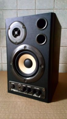 Enceintes Home Studio MS20