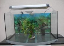 Aquarium 140L/84cmGalbéVision2Néon+filtre+chauffage