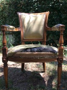 Paire de fauteuils Louis XVI à rénover