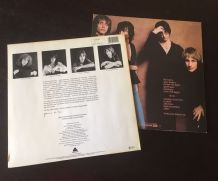 Patti Smith lot 2 vinyles 33 t