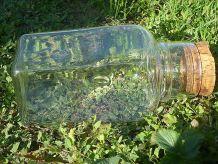 grand  bocal carré  en verre bullé ,  vintage