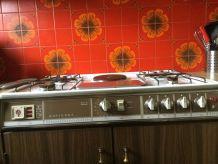 Plaque de cuisson gaz et électrique