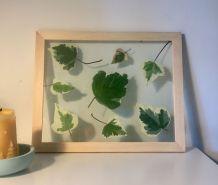 Herbier Green & white