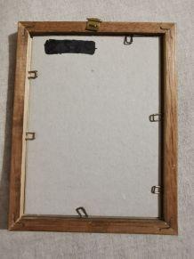 Petit cadre en bois planche botanique