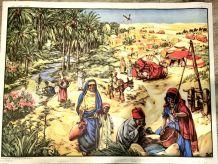 Affiche scolaire Mdi Les pays tropicaux, Le désert