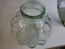 Bocal en verre pour terrarium