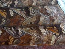 Tableau vintage en marqueterie d'ailes de papillons
