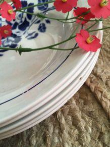 Assiettes creuses St Amand aux fleurs bleues.
