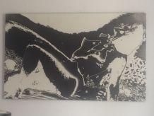 Tableau ou photographie d'art en négatif. Nu. 1970.