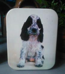 Deux boites en tôle lithographiée - Modèle chiens !
