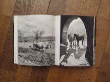Perigord Enchanté- 1974- Paul Fénelon- Arthaud