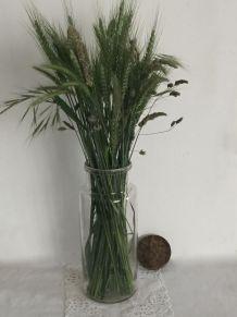 Grand bocal pour la cuisine ou les fleurs d'été