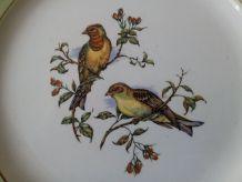 """Six assiettes en faïence K&G LUNEVILLE """" Les oiseaux """""""