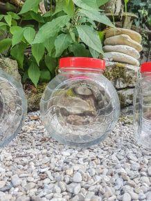 1 Pot en verre vintage Rangement cuisine Bocal en verre Anné
