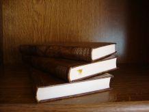 """Lot de 3 livres reliés """"Le jeu de la Tentation"""""""