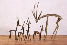 Gazelles Laiton