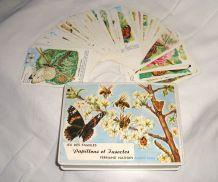 Jeu des 7 familles vintage - Papillons et insectes