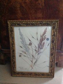 Cadre herbes séchées et dessin