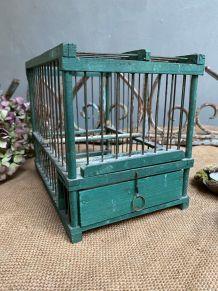 Petite cage verte