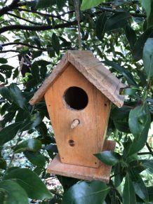Nichoir pour oiseaux du jardin
