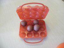 Boîte à Oeufs orange