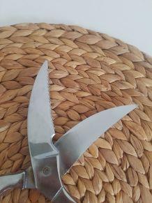 Ancienne paire de ciseaux de cuisine pour volaille