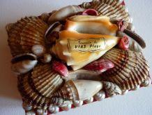 petite boite à bijoux décor de coquillages Vias plage