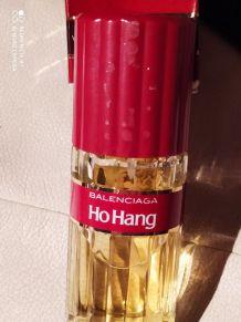 Ho Hang de Balenciaga