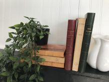 Ensemble de 6 livres anciens pour déco