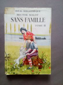 Sans famille, Hector Malot, Tome II