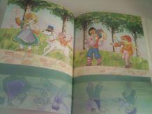 Livre Remi Le mystère d'une naissance Editions G.P. Rouge et
