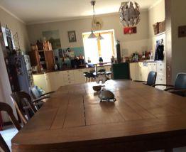 Table chêne XXL