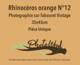 Tabouret Rhinoceros orange