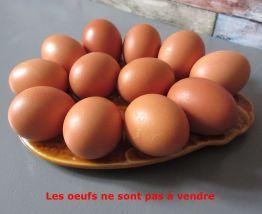 1 présentoir ancien pour 12 œufs en faïence années 50