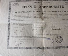 Diplôme herboriste année 1931